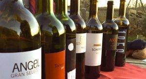 Weinauswahl Mallorca