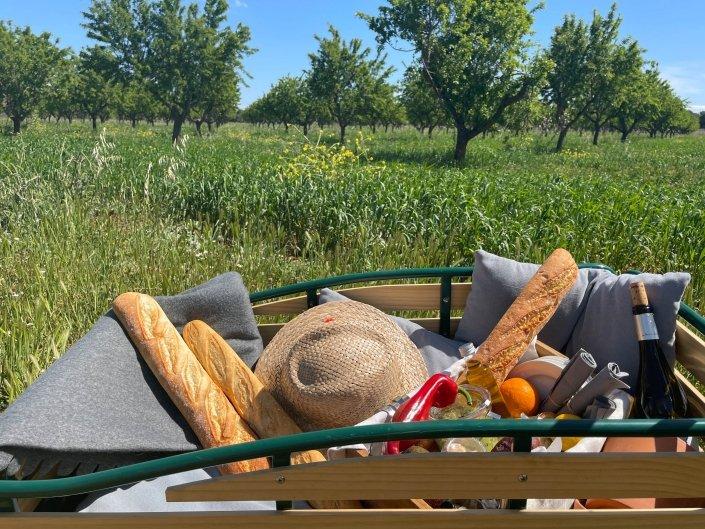 Picknick auf Mallorca